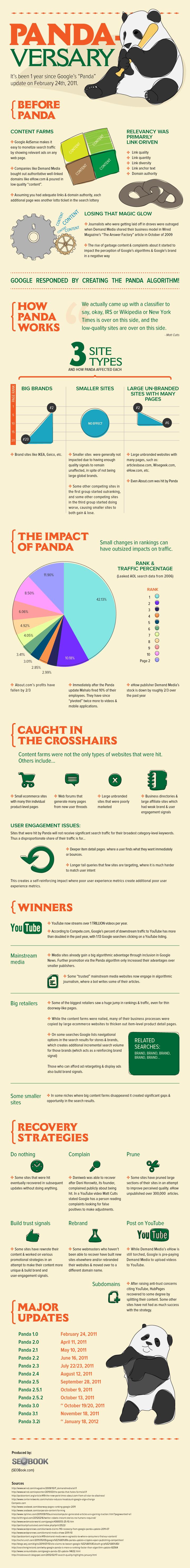 Google Panda Infographic.